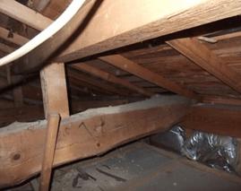 屋根裏の状態確認